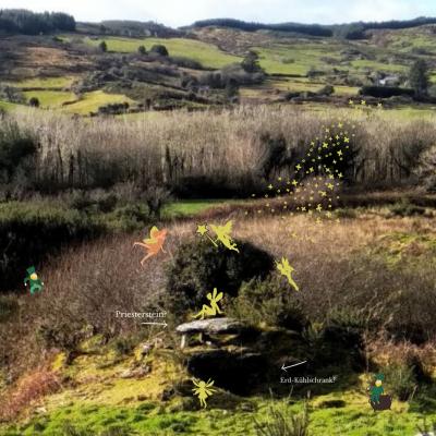 Fairy tale in Irland/ Feen und Elfen